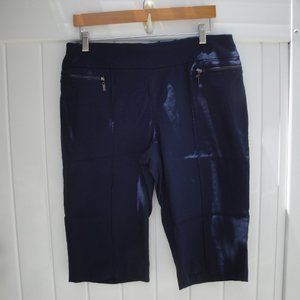 Style & Co Navy  Blue Pull-On Twill Capris…